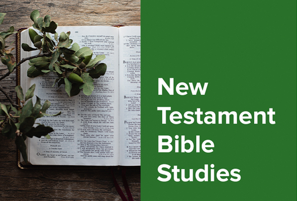 New Testment Bible Studies
