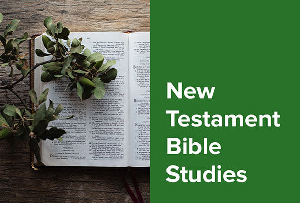 New Testament Bible Studies