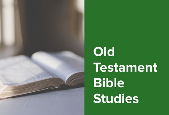 Old Testament Bible Studies