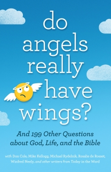 Do Angels Really Have Wings?: ... And 199 Other Questions About God, Life, and the Bible