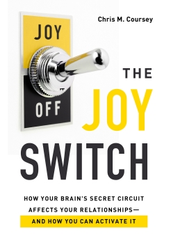 The Joy Switch Book Cover