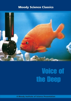 Voice of the Deep Book Cover